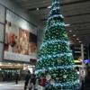 小倉駅のクリスマスツリー2014